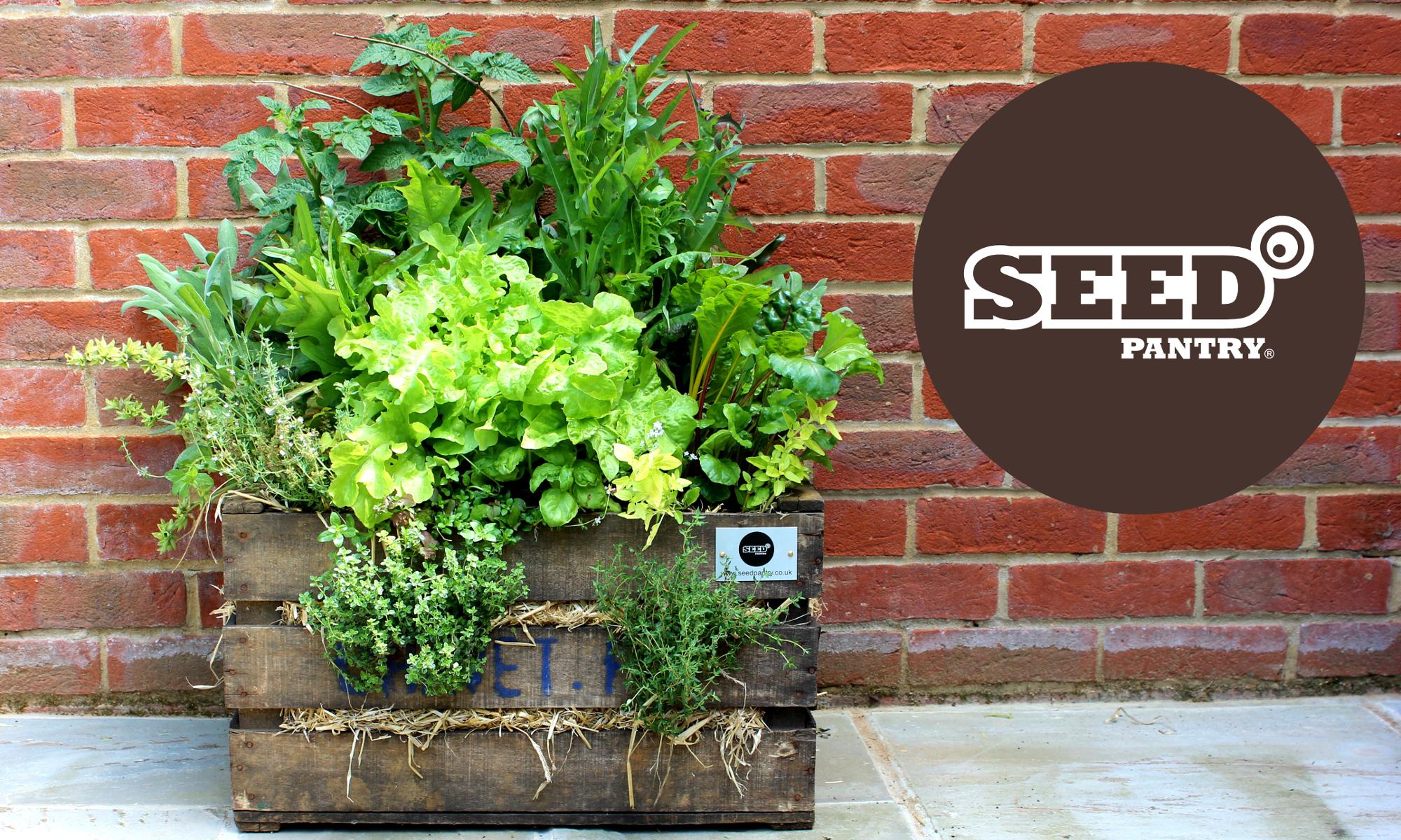 Seed Pantry Blog